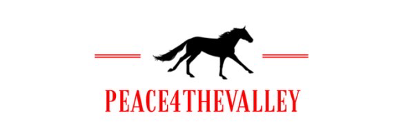 Peace 4 The Valley Logo